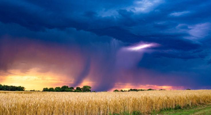 Rick Rasmussen Rain